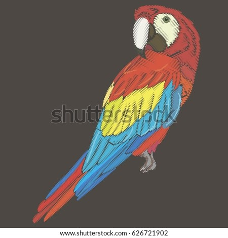 Parrots.The embroidery design, vector, illustration