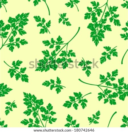 Parsley seamless pattern, garden plant background, vector - stock vector