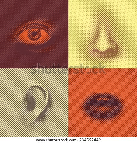 Part of face of lines (eye, nose, ear and mouth), eps 8 - stock vector