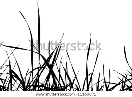 Grass Outline Vector of grass silhouette vector
