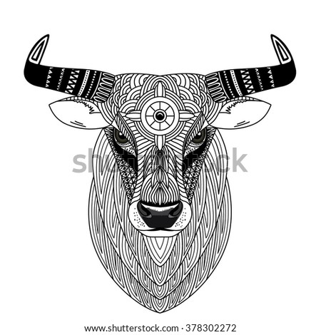 bull head coloring page - ox stock photos images pictures shutterstock