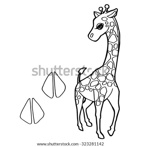Paw Print With Giraffe Coloring Page Vector