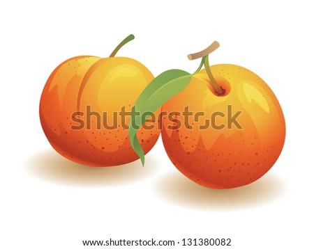 Peach, Isolated Vector Fruit - stock vector