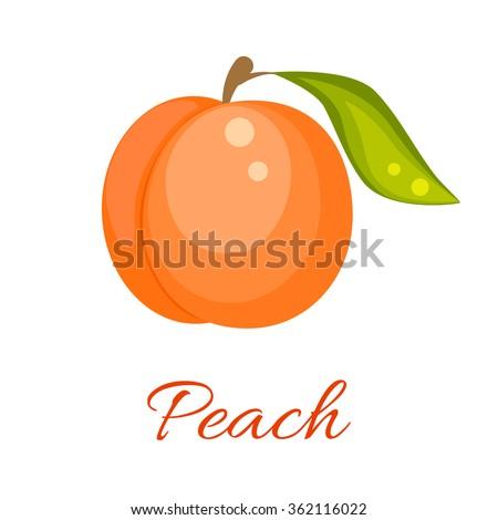 Peach isolated vector icon. Peach fruit on branch with leaf. Orange peach logo. Peach juice or jam branding logotype. - stock vector