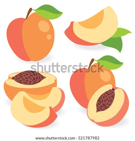 Peaches whole and cut vector illustration - stock vector