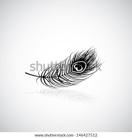 Peacock feather - vector illustration - stock vector