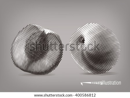 Pear in a cut. Vector artwork in the style of ink drawing - stock vector