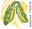 peas in a pod in a woodcut style image of produce. - stock vector