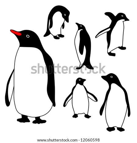 Penguin Collection vector is hand drawn original artwork.