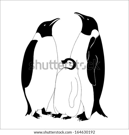 Penguin family  - stock vector