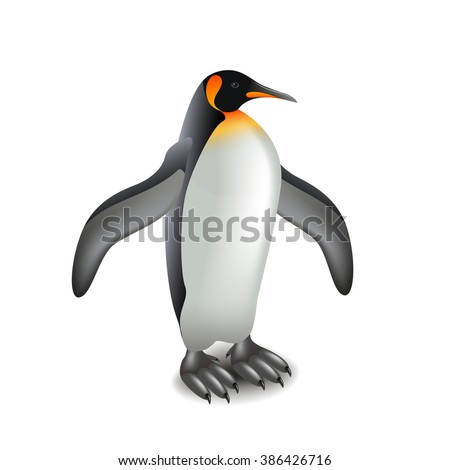 Penguin isolated on white photo-realistic vector illustration