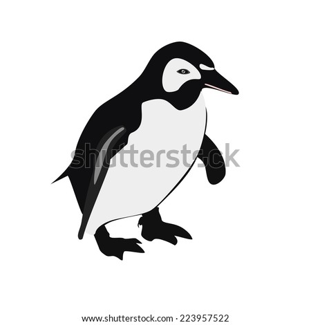 Penguin, penguin isolated,   emperor penguin, penguin vector
