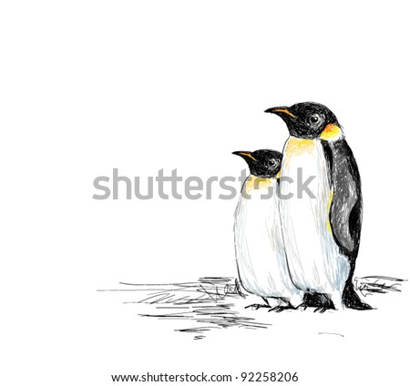 Penguins Hand Drawn - stock vector