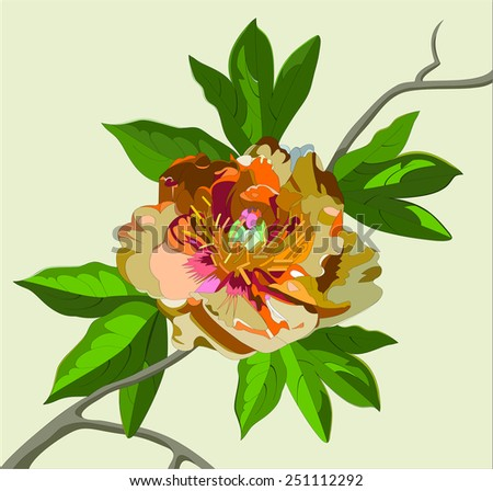 peony flower on a branch - stock vector