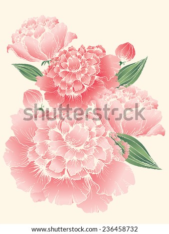 peony vector/illustration - stock vector