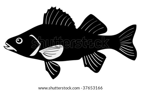 perch - stock vector