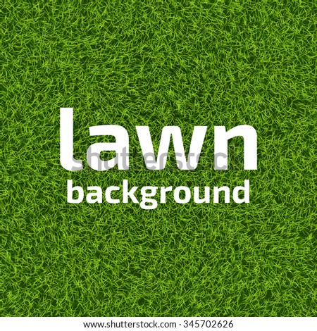 Perfect lawn background. Realistic green grass background. Beautiful fresh lawn grass texture. Vector illustration for your design. - stock vector
