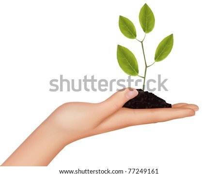 Person holding a young plant. Vector illustration. - stock vector