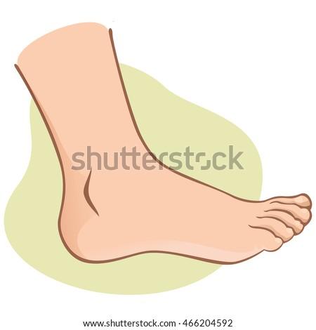 Người, bên xem chân của con người.  da trắng.  Lý tưởng cho danh mục sản phẩm, thông tin và hướng dẫn chế