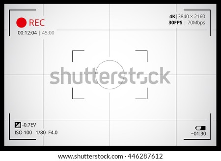 Photo or video camera viewfinder grid with many shooting settings on screen like AF dot, exposure and camera options. Recording led blinked. Realistic corner fall off. Vector background - stock vector
