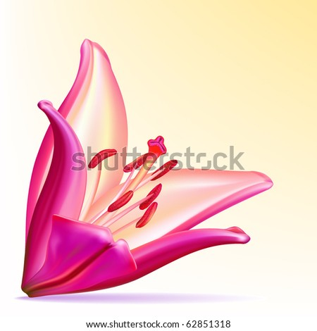 Photo-realistic vector beautiful purple-lilac lily - stock vector