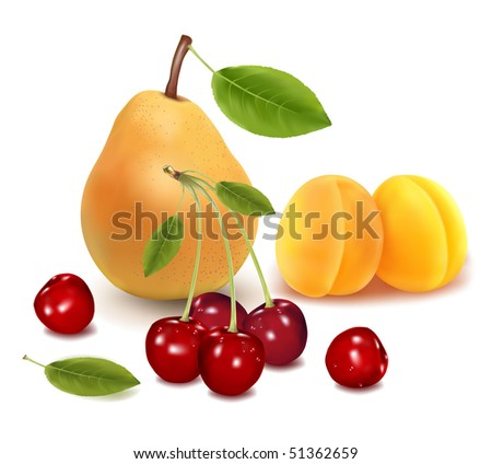 Photo-realistic vector illustration. Colorful group of fruit.