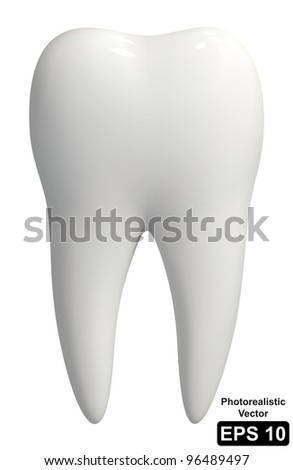 Photo-realistic vector illustration of a white tooth - isolated icon - stock vector