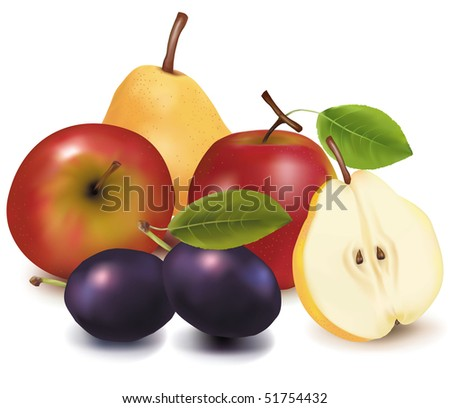 Photo-realistic vector illustration. Two apples, two plums and two pears