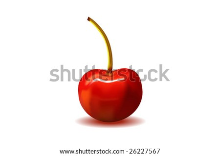 photorealistic cherry vector - stock vector