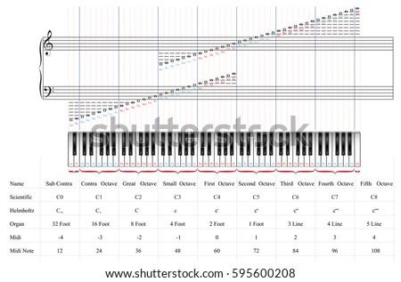 Piano Keyboard 88 Keys By Octaves Stock Vector 2018 595600208