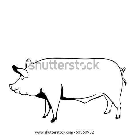 pig black and white vector illustration - stock vector
