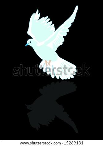 pigeon - stock vector