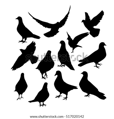 pigeons silhouette. Vector
