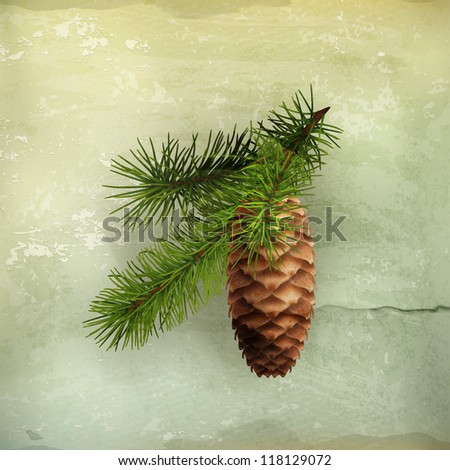 Pine cone with branch, old-style vector - stock vector