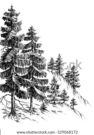 Pine forest, winter mountain landscape drawing - stock vector