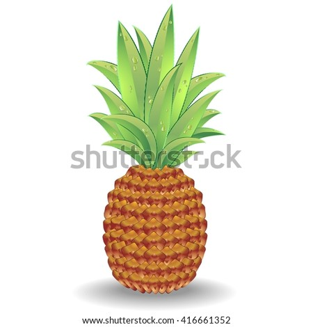 Pineapple - stock vector