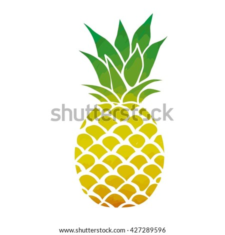 pineapple - vector illustration