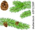 pinecone and pine branches - vector illustration - stock photo