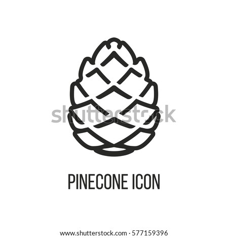 pinecone icon isolated white stock images royaltyfree