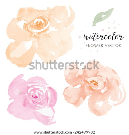 Pink and Orange Vector Watercolour Flowers. Watercolor Vector Flowers - stock vector