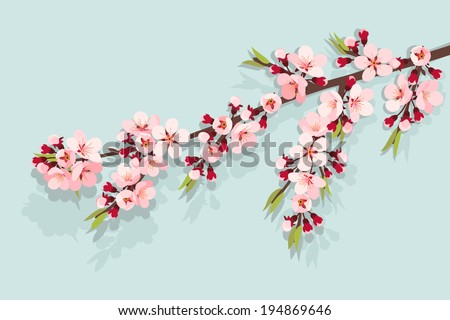 Pink cherry blossom on sky blue background - stock vector