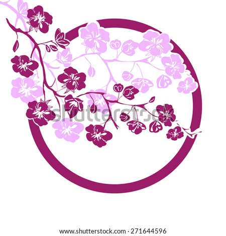 pink cherry blossoms branch is on white background. Vector illustration - stock vector