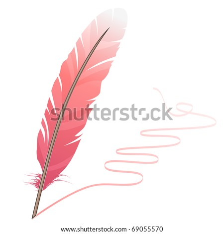 Pink feather and flourish isolated on white background - stock vector