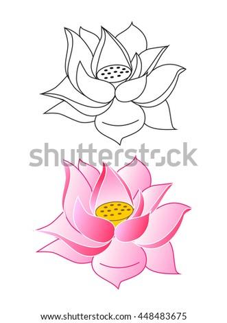 Pink lotus flowers coloring vector illustration stock vector pink lotus flowers coloring vector illustration mightylinksfo