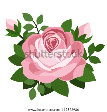Pink rose. Vector illustration. - stock vector