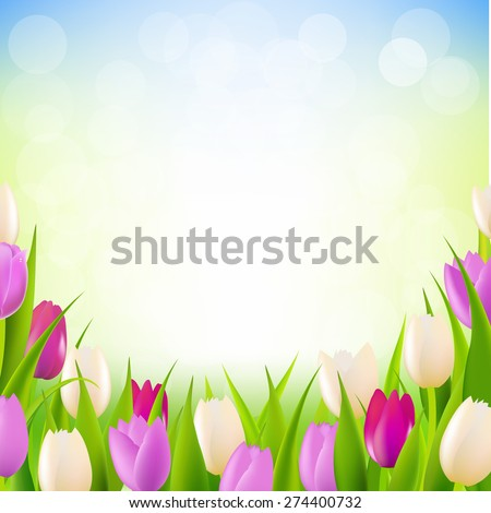 Pink Tulip Border With Gradient Mesh, Vector Illustration - stock vector