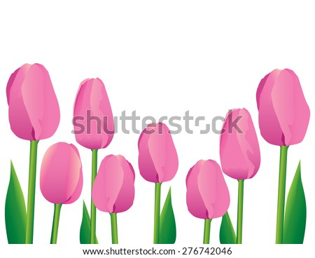 Pink Tulips Along the Bottom Border Isolated Room for Text - stock vector