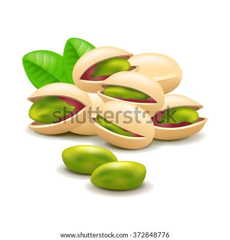 Pistachios nuts isolated on white photo-realistic vector illustration - stock vector
