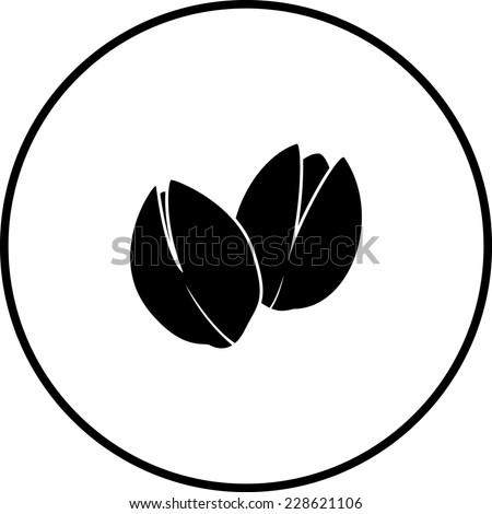 pistachios symbol - stock vector