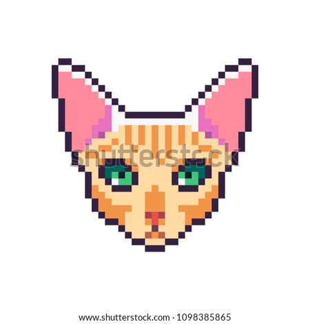 Pixel art vector sphynx cat icon isolated on white background.